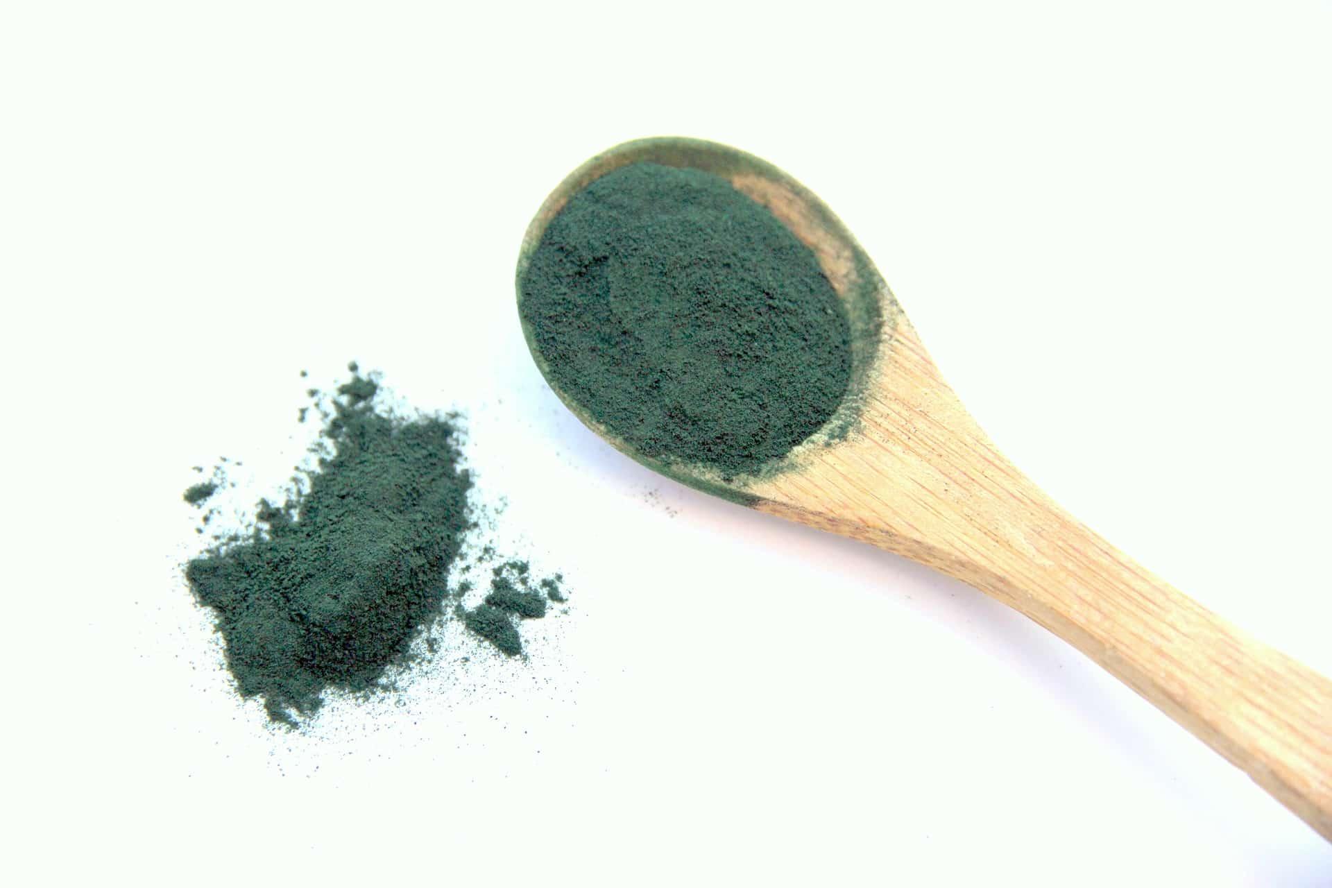 La spiruline, star des algues, entre en cuisine