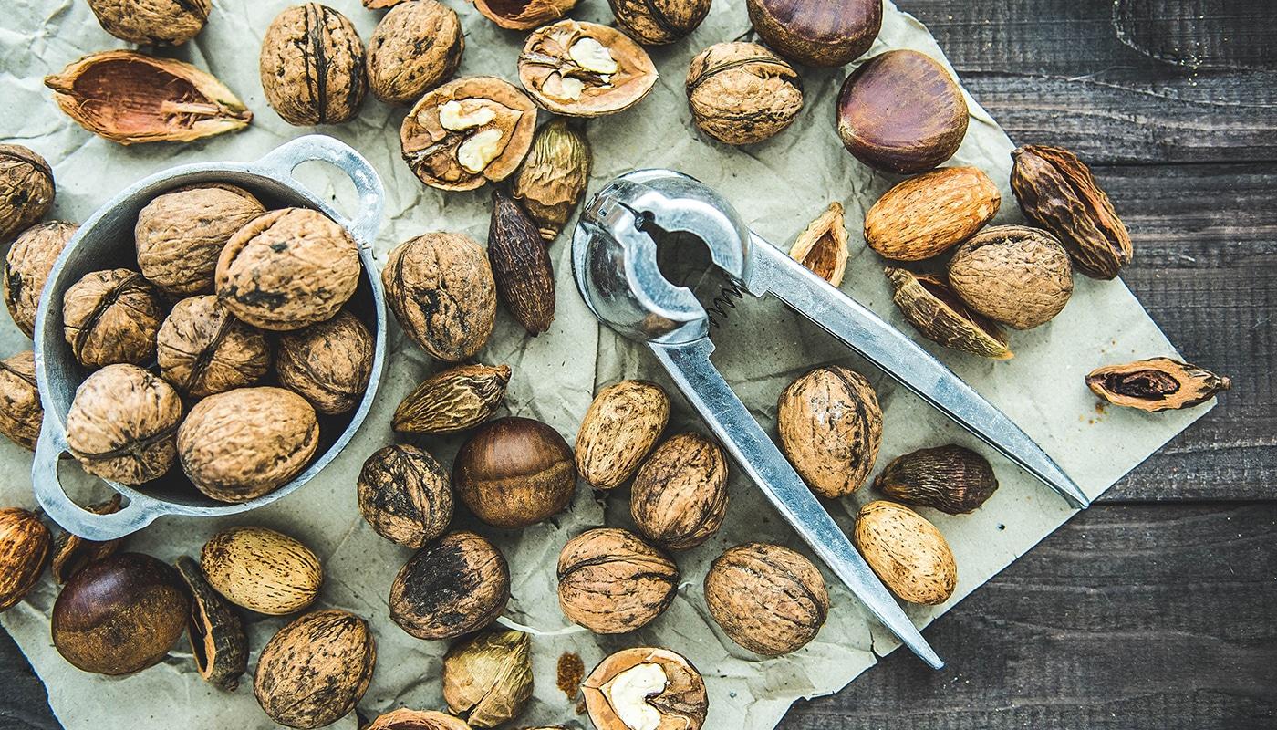 Les 10 aliments riches en lipides