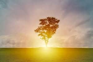 5 bonnes habitudes peuvent faire gagner 10 ans d'espérance de vie