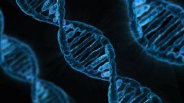 Épigénétique: l'ADN, le nouveau coach.