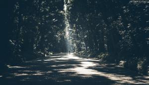 20 manières d'améliorer votre vitalité sans trop d'efforts