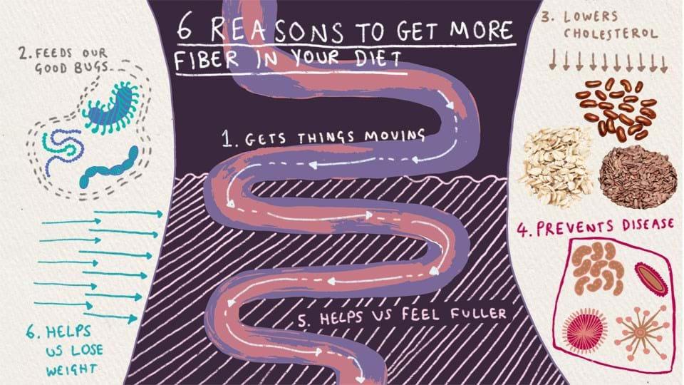 6 raisons d'intégrer les fibres à votre alimentation
