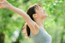 Trois plantes pour booster vos défenses immunitaires